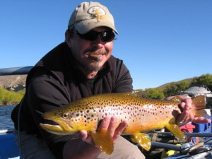 Argentina Brown Trout