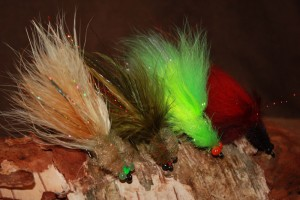 Belize Tarpon Fly -Tarpon Toad Selections the one fly to have when tarpon fishing