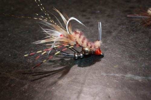 Permit love this fly